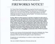 FireworkYN052020